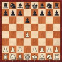 1. d6 ein Schwarzrepertoire gegen 1.d4/c4 komplett